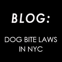 Dog Bite Laws in New York